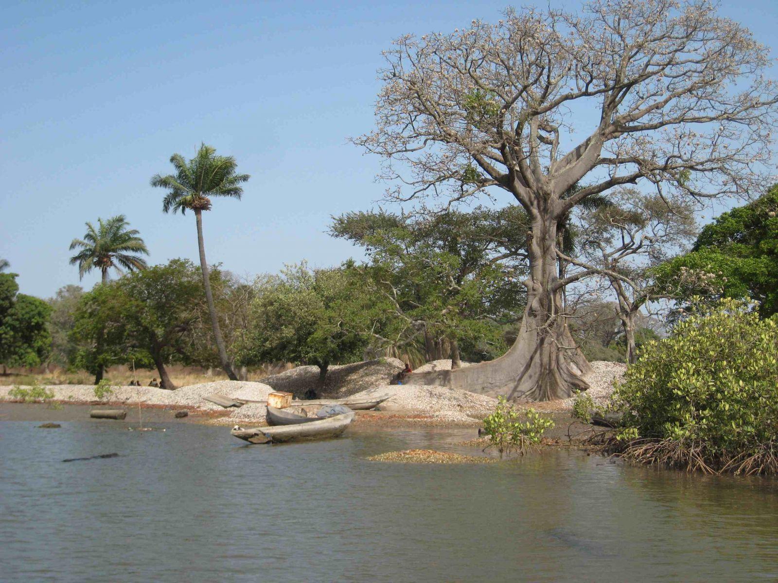 Sénégal : Eco-Parc de Boucotte