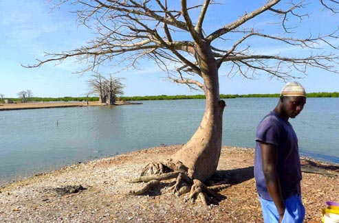 Sénégal : Errance de Casamance