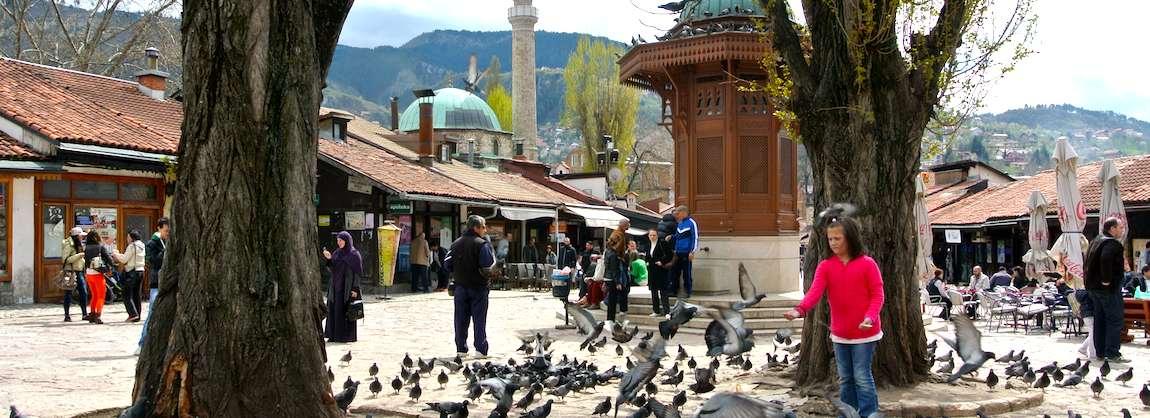 Baština, voyages équitables et multipolaires