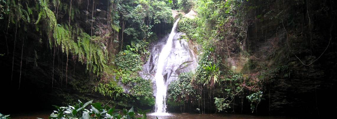 Fraîcheur et forêt du Togo