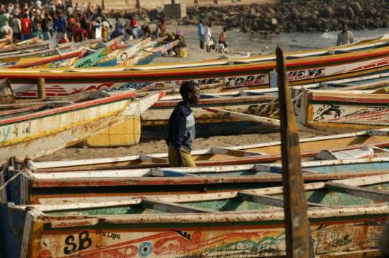 Sénégal : Dakar Sauce Arachide