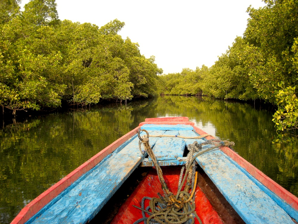 Sénégal : Rando Pirogue dans le delta du Saloum