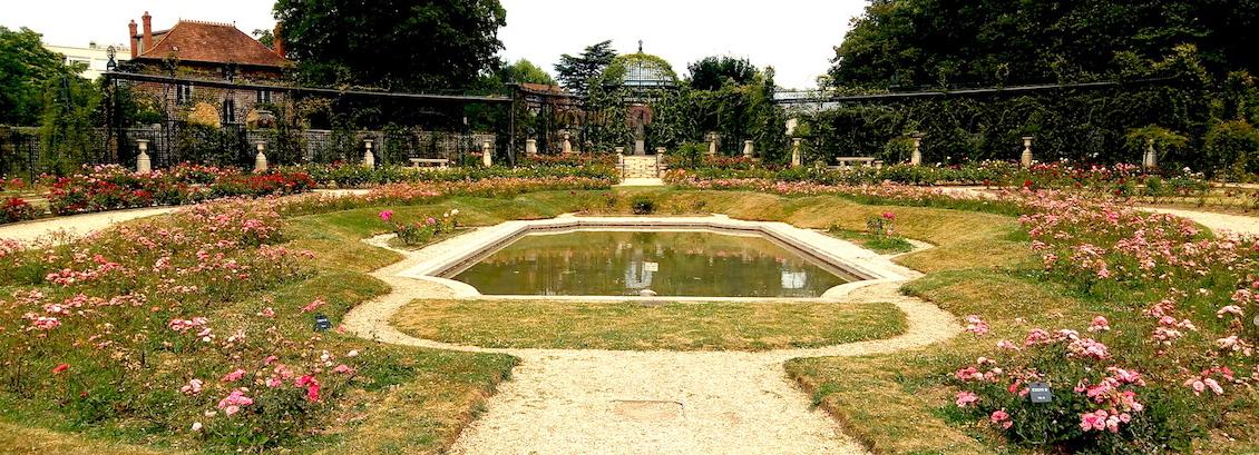Les castors du Jardin parisien de L'Haÿ les Roses